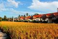 アラム プイシ ヴィラ Alam Puisi Villa - Ubud - Bali Hotels Bali Villas