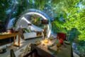 Bubble Lodge Ile aux Cerfs ホテルの詳細